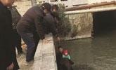 城管救落水男童:想起当年没救起的儿子