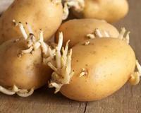 常见蔬菜的8大要命吃法,你肯定这么吃过!