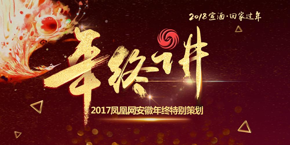 凤凰网安徽年终特别策划