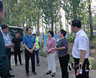 常務副市長張紅梅組織召開中建七局G343項目現場推進會