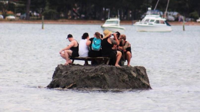 为对抗禁酒令_新西兰小伙跑去海上填海造岛