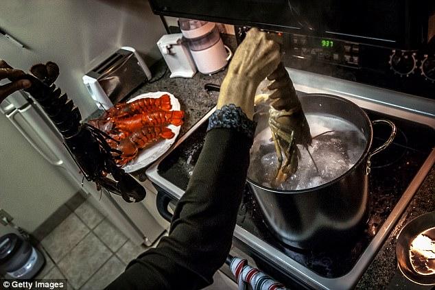 瑞士修改法律 不准用开水煮活虾不准冷冻活虾