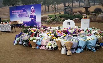 她癌症逝世三周年 百余名粉丝墓地缅怀