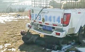 羊被查扣 男子用绳圈套脖拴住执法车