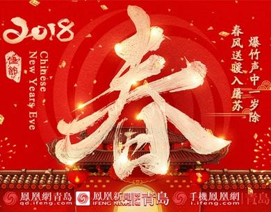 凤舞戊戌 2018回家过年