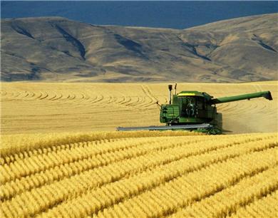 2018我国粮食生产目标确定