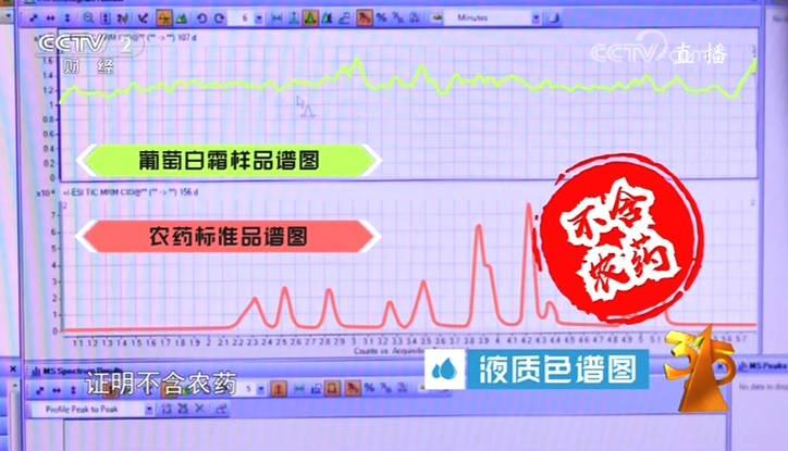 央视315曝光季节性谣言:仿真包菜?注射西瓜?假的