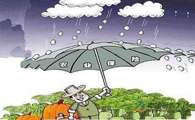 重庆33个区县推行种养业生产灾害险