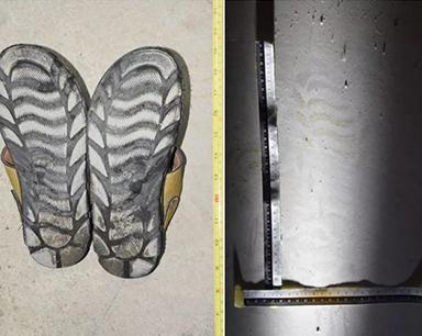 女子报案称家中被盗 民警通过鞋印现场破案
