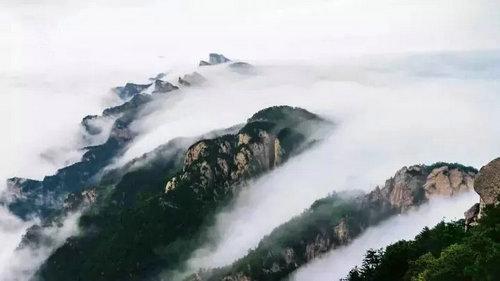 天气炎热 在洛阳白云山的天然绿色大空调里清凉一夏