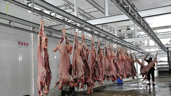 """长沙首条牛羊屠宰标准生产线投产 """"放心肉""""再添防线"""