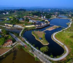 重庆市江津区创新举措提升政务服务水平