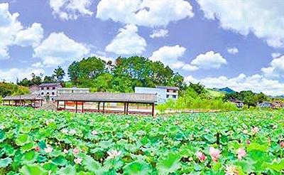 重庆首批乡村规划师下乡 助力乡村振兴