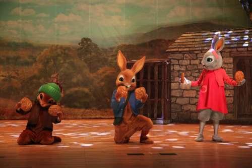 7.19、20英国国宝级动漫舞台剧《比得兔——守护万圣节》中文版