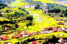 陕西用三年时间集中开展农村人居环境整治