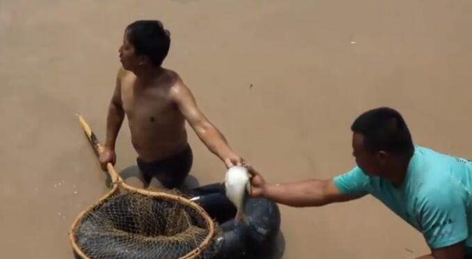 上百村民黄河边冒险捞鱼