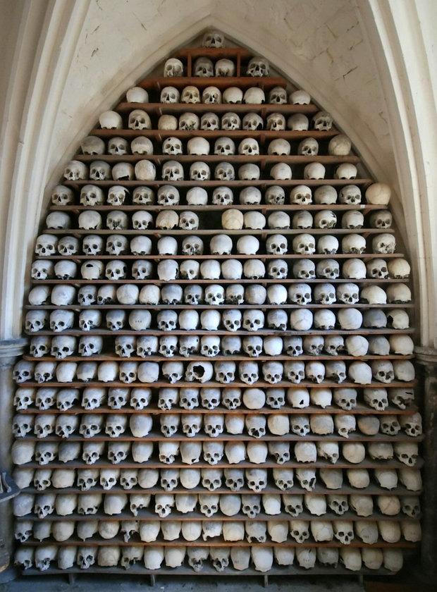 离奇盗窃案:21颗人头骨神秘丢失