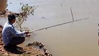 越南:男子周末在河边钓到很多罗非鱼,令人羡慕