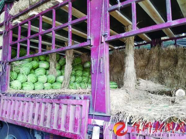 株洲一男子租车卖西瓜司机拉着两万多斤瓜跑了