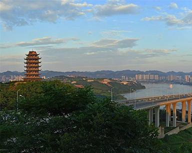 中国西部木材贸易港落户重庆巴南
