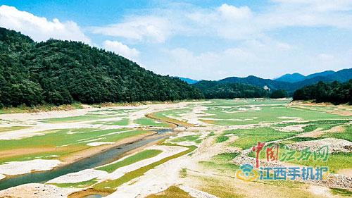 江西6设区市16.91万人饮水难