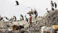 印度接盘洋垃圾,却遭遇处理难题,请求中国帮忙!