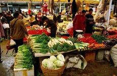 9月陕西省23种蔬菜零售均价环比、同比均出现上涨