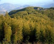 秋天换个角度看西九华山、龙津溪地