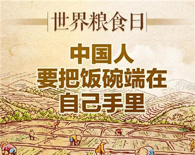 世界粮食日丨中国人要把饭碗端在自己手里