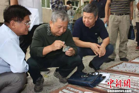 江西省发现世界最大硅灰石矿床  矿物量695