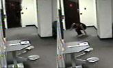 女囚犯越狱从天花板跳下 落地才得知自己刚被释放