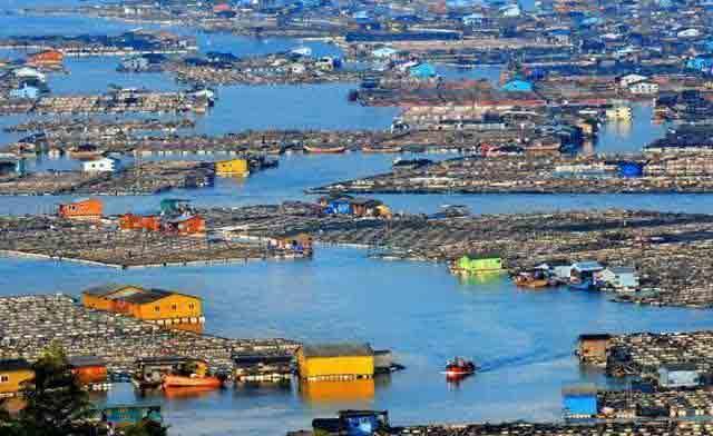 我国唯一漂在海上的城市 2万人生活在此 了解一下