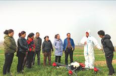 陕西省农业投资高速增长 乡村振兴战略成效初显