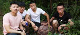 萍鄉經開區一廢土堆中發現六枚白堊紀晚期恐龍蛋化石