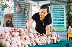 陶艺教师历时三个月创作泥塑作品宣传扫黑除恶