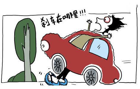 正常行驶的车撞死宠物狗,车子全险,请问谁赔