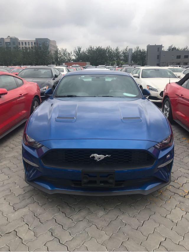 进口福特野马加版2.3T跑车 天津港爆惠