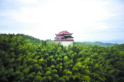 4月16日,桃江县桃花江竹海景区一望无际的竹海.