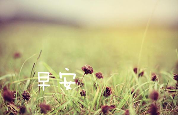 离开一个地方,风景就不再属于你;错过一个人