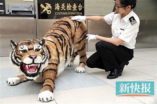 老虎复杂剪纸步骤图解