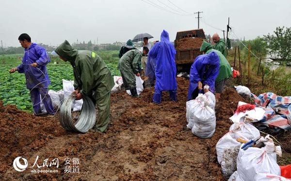白湖镇应急抢险队伍冒雨装运沙袋等防汛物资,打好防汛抗洪持久战。