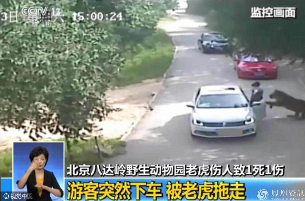 北京动物园一游客遭老虎扑咬全过程