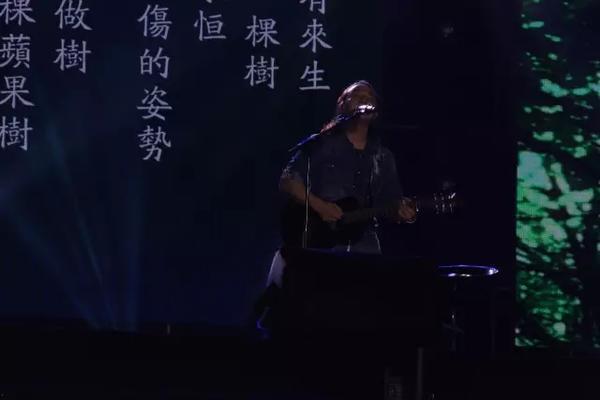 民谣诗人--赵照(聊城土生土长的明星呦)