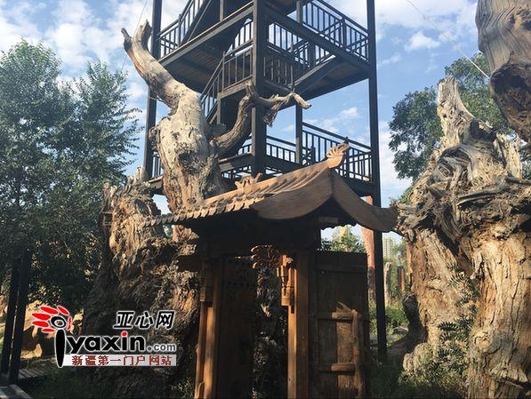 参观新疆古生态园、汗血宝马基地-乌鲁木齐市新增一处城市中心旅游
