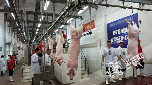 """社局共同主办的""""2016年重庆市动物检疫技能竞赛""""举行"""