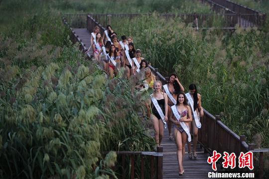 佳丽们参观泗洪湿地。 泱波 摄