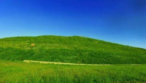 蒙草边坡生态修复工程技术解密