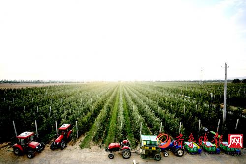 永辉超市携手海升集团缔造果蔬全产业链生态圈