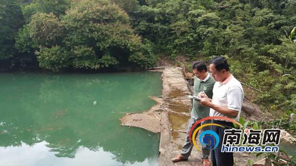 驻村干部进行危桥调研。通讯员供图