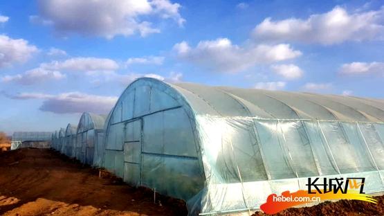 """省安监局驻村工作组通过""""扶贫超市""""为马圈堡村建起了蔬菜大棚。吴志鸿 摄"""